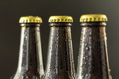 Glass bottles of beer on dark background. The group of wet bottles of beer. Selective focus royalty free stock image