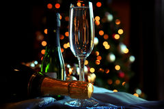 Glass and bottles of champagne. With Christmas background royalty free stock photography