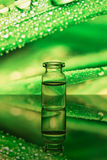 Glass bottles on a colored background Royalty Free Stock Images