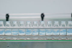 Glass bottles on the conveyor belt Stock Photography