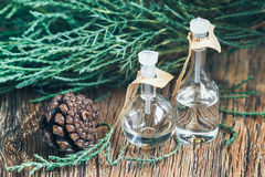 Glass bottles of essential oil with pine cones on wooden background. Selective focus Royalty Free Stock Images