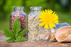 Glass bottles with healing herbs on wooden board. In sunset sunlight, herbal medicine Royalty Free Stock Image