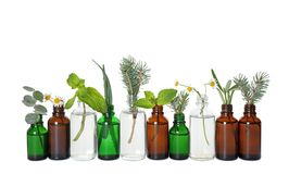 Free Glass Bottles Of Different Essential Oils With Plants On Background Stock Photo - 160050900