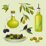 Glass bottles of olive oil, branches with green and black olives, organic, natural and healthy food, vegetarian product. In bottles with cork and dispenser Stock Photo