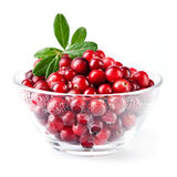Glass bowl with cranberries Royalty Free Stock Images