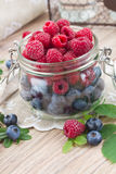 Glass bowl of fresh  berries Royalty Free Stock Images