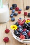 Glass bowl of fresh blackberries, raspberries, blueberries Stock Photos