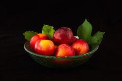 Glass bowl with fresh plums Stock Images