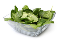 Glass bowl of fresh spinach Royalty Free Stock Image