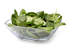 Glass bowl of fresh spinach Royalty Free Stock Images