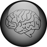 Glass Brain Button Stock Photo
