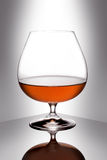 Glass of brandy. Snifter glass of cognac on white background Royalty Free Stock Photo