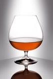 Glass of brandy Royalty Free Stock Photo