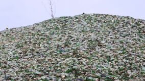 Glass broken bottles in recycling industry factory. Mountain of glass broken multicolored bottles. Glass broken bottles in recycling industry factory. Crushed of stock video footage