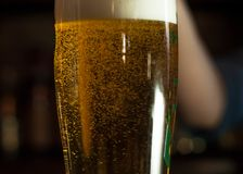 Glass with bubbling clear yellow beer in a bar. Close up of glass with bubbling clear yellow beer in a bar royalty free stock photo