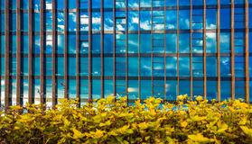 Glass building Royalty Free Stock Photos