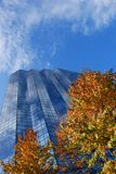 Glass Building and Fall. Tall Glass Office Building in the City Stock Image