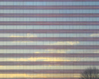 Glass building wall Stock Images