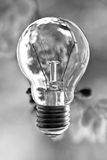 Glass bulb on blur background Royalty Free Stock Photography