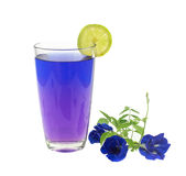 Glass of butterfly pea flower juice on white background Royalty Free Stock Photography