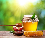 Glass can full of honey, apple and combs. Glass can full of honey, apple and combs on wooden table at the nature background Royalty Free Stock Image