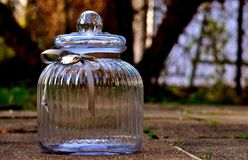 Glass, Candy-Glass, Container Royalty Free Stock Photo