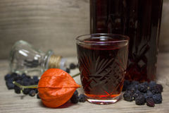 Glass and carafe with red alcoholic beverage Royalty Free Stock Image