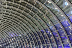 Glass ceiling of Marina Bay Sands park mall Royalty Free Stock Images