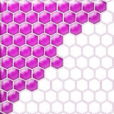 Glass cells purple white.. Two groups of the fighting hexagons. It is , the worker of paths is present Stock Images
