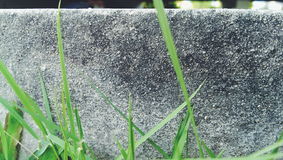 Glass and cement ground Stock Photography