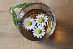Glass of chamomile tea Stock Photo
