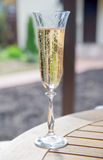 A glass of champagne Stock Image