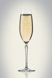 Glass of champagne Royalty Free Stock Photos