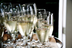 Glass of champagne. Picture of a glass of champagne royalty free stock photos