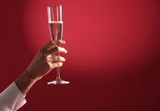 Glass of champagne Royalty Free Stock Images