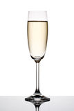 Glass of champagne. Stock Images
