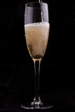 Glass with champagne Stock Photos
