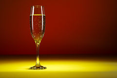 Glass of champagne on colorful background. Studio shot of Glass of bubbly.  stock photography