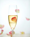 Glass of champagne and falling rose petals Stock Images