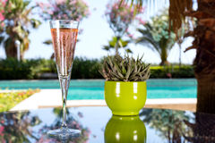 Glass of champagne. On the glass table in outdoor resort bar Royalty Free Stock Photos