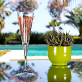 Glass of champagne. On the glass table in outdoor resort bar Stock Image