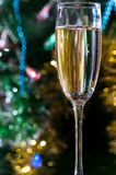 A glass of champagne under the Christmas tree stock images