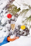 Glass with champagne in winter stock photos