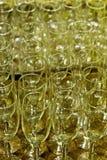 Glass champagnestemware Royaltyfri Bild