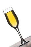 Glass of champaign. Whit white background in the back royalty free stock images