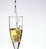 Glass of champange Royalty Free Stock Images