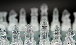 Glass chess Stock Photography