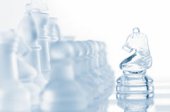 Glass chess knight Stock Photo