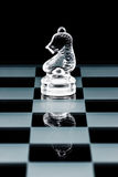 Glass chess knight Stock Image