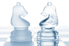 Glass chess knights Royalty Free Stock Images
